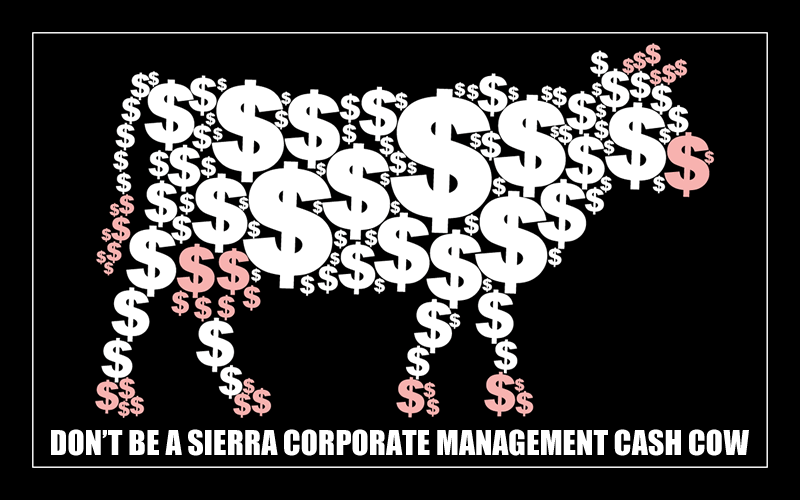 DON'T BE A SIERRA CORPORATE MANAGEMENT CASH COW