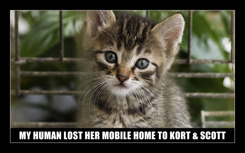 MY HUMAN LOST HER MOBILE HOME TO KORT & SCOTT