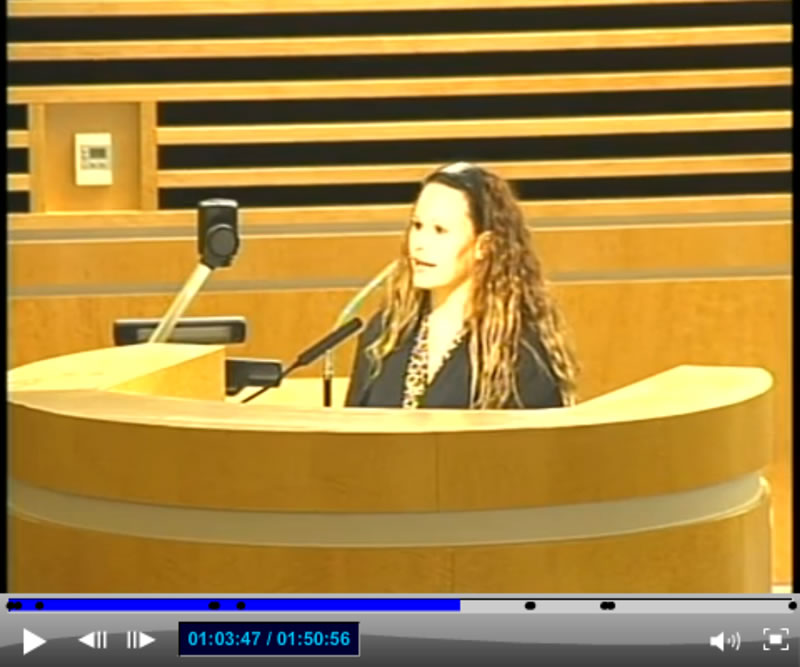 Corona City Council Meeting - Resident Speaker 5