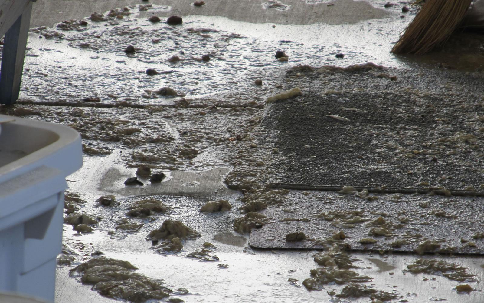 sewage spills - mobile home owner tips